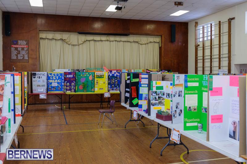 Purvis Primary School Science Fair Bermuda Feb 2020 (5)