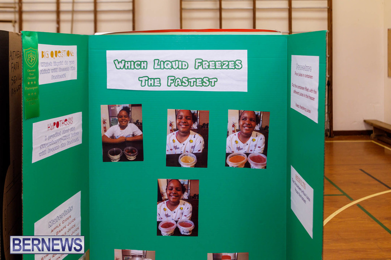Purvis Primary School Science Fair Bermuda Feb 2020 (6)