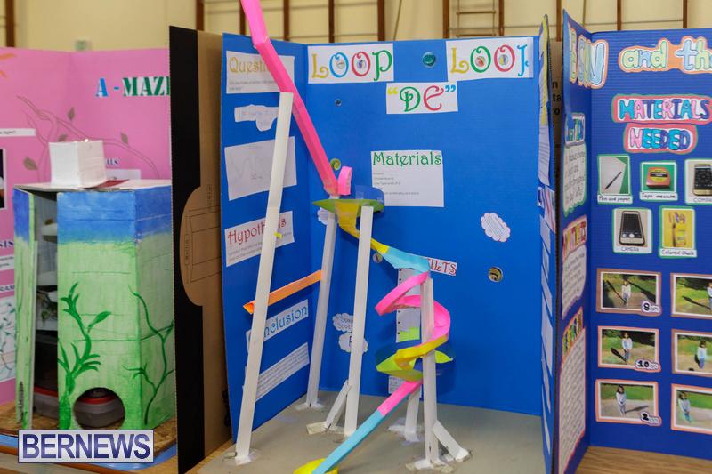 Purvis Primary School Science Fair Bermuda Feb 2020 (7)