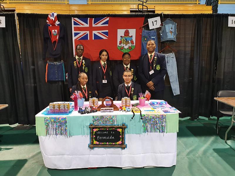 Virtual Enterprise International Bermuda March 2020 (2)