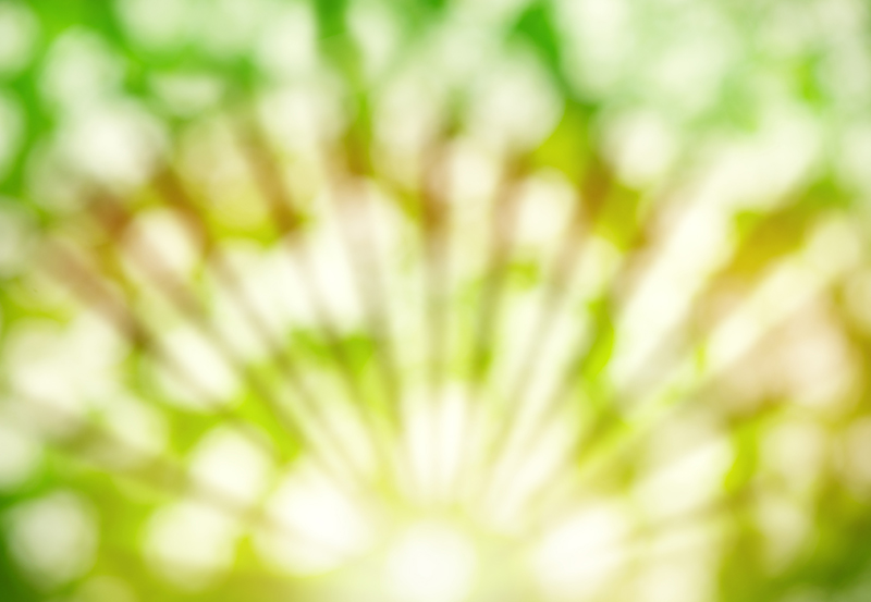 Abstract Summer Background With Sunlight