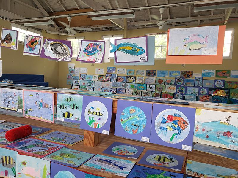 Ag Show Exhibition Art Entries Bermuda June 2020 (3)