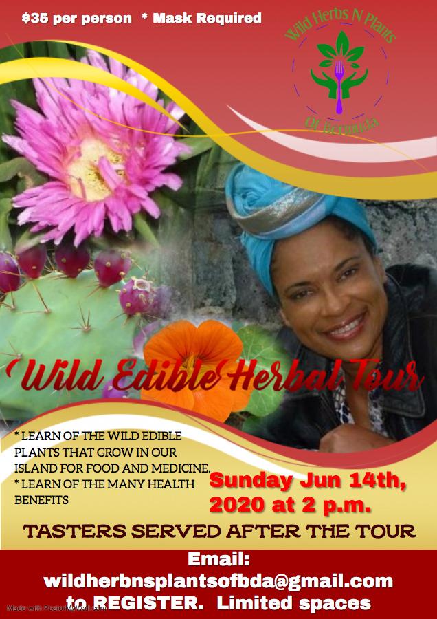 Wild Edible Herbal Tour Bermuda June 2020
