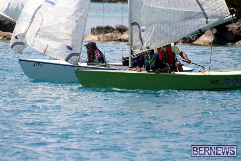 Bermuda sailing  Louise Wall Memorial Oil Dock Comet Race July 2020 (2)