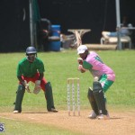 Cricket Premier & First Division July 12 2020 (1)