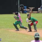 Cricket Premier & First Division July 12 2020 (14)