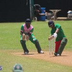 Cricket Premier & First Division July 12 2020 (15)