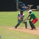 Cricket Premier & First Division July 12 2020 (17)