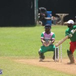 Cricket Premier & First Division July 12 2020 (18)