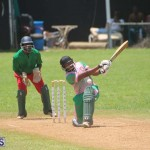 Cricket Premier & First Division July 12 2020 (2)