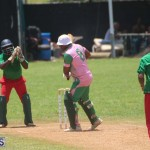 Cricket Premier & First Division July 12 2020 (5)