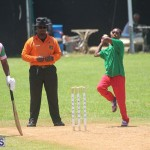 Cricket Premier & First Division July 12 2020 (6)