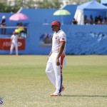 2019 Cup Match Bermuda Day One Aug 1 getting started DM (34)