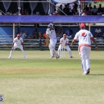 2019 Cup Match Bermuda Day One Aug 1 getting started DM (39)