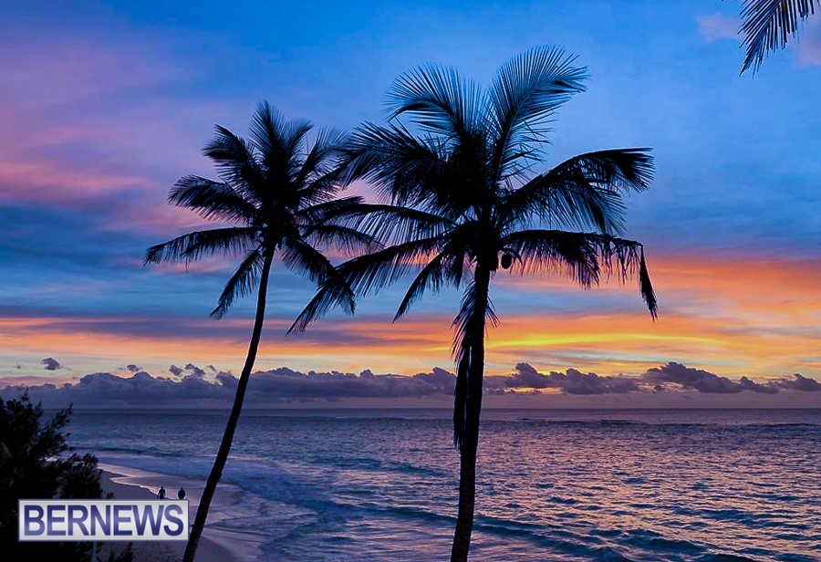724 - Two palm trees are silhouetted against a beautiful south shore sunset