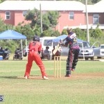 BCB Premier & First Division Aug 09 2020 13