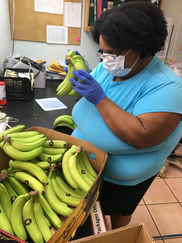 Bananas Bermuda Aug 12 2020 (4)
