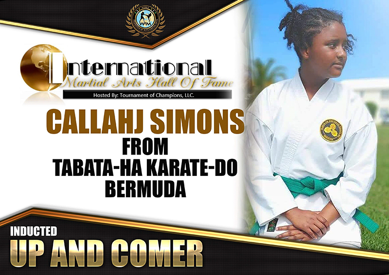 Martial Arts Hall Of Fame Bermuda Aug 2020 2