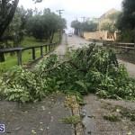 Post Hurricane Paulette Bermuda 14 2020 (10)