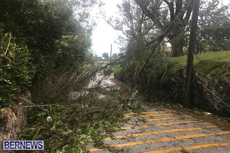 Post-Hurricane-Paulette-Bermuda-14-2020-11