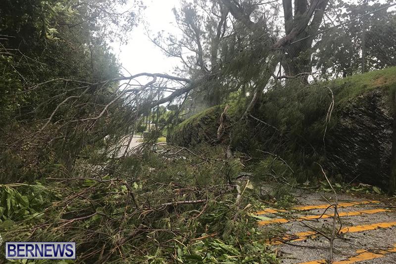 Post-Hurricane-Paulette-Bermuda-14-2020-12