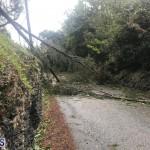 Post Hurricane Paulette Bermuda 14 2020 (13)