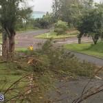 Post Hurricane Paulette Bermuda 14 2020 (14)