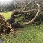 Post Hurricane Paulette Bermuda 14 2020 (15)