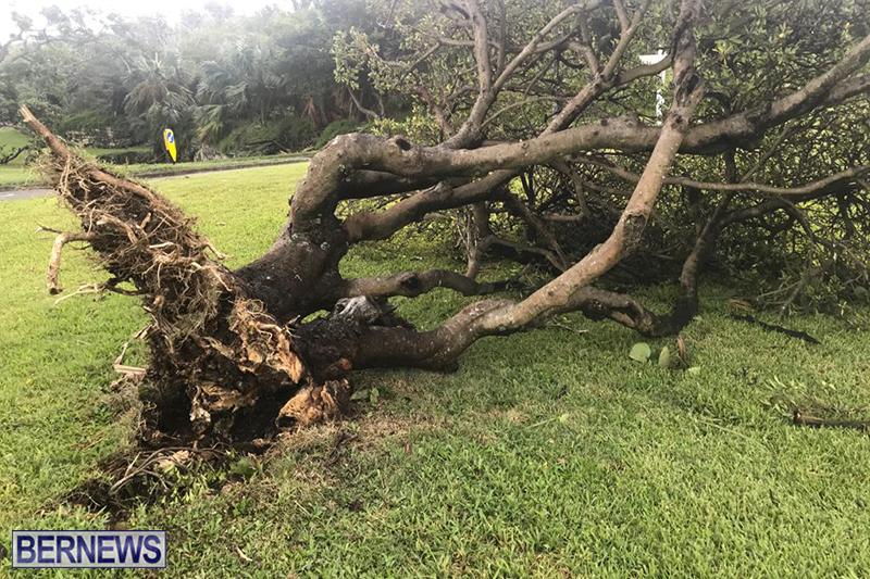 Post-Hurricane-Paulette-Bermuda-14-2020-15