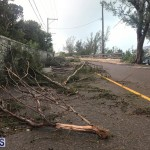 Post Hurricane Paulette Bermuda 14 2020 (18)