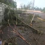 Post Hurricane Paulette Bermuda 14 2020 (19)