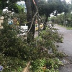 Post Hurricane Paulette Bermuda 14 2020 (21)