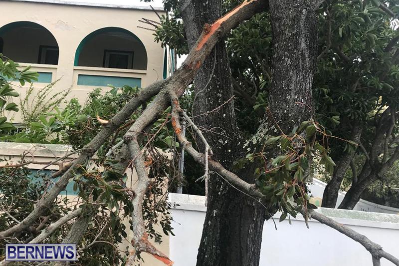 Post-Hurricane-Paulette-Bermuda-14-2020-22