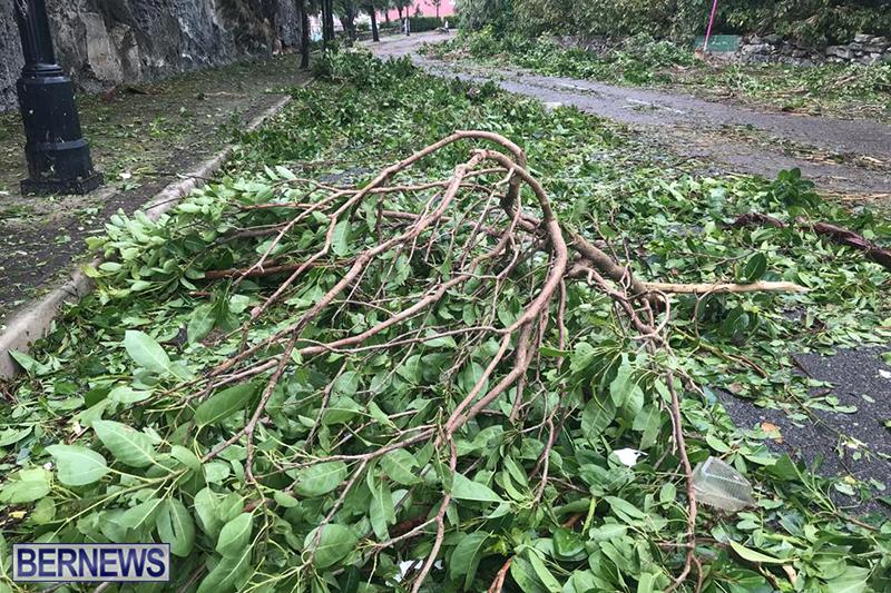 Post-Hurricane-Paulette-Bermuda-14-2020-23