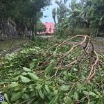 Post Hurricane Paulette Bermuda 14 2020 (24)