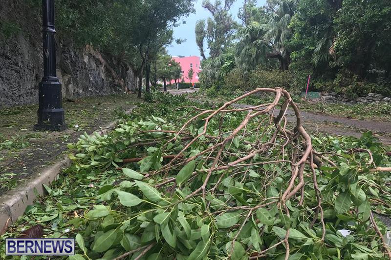 Post-Hurricane-Paulette-Bermuda-14-2020-24