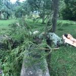 Post Hurricane Paulette Bermuda 14 2020 (27)