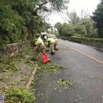 Post Hurricane Paulette Bermuda 14 2020 (28)