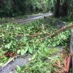Post Hurricane Paulette Bermuda 14 2020 (29)