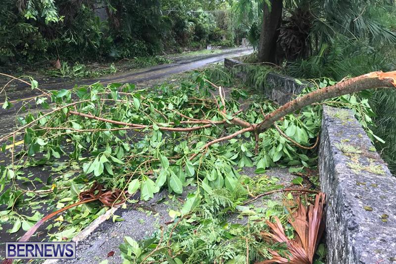 Post-Hurricane-Paulette-Bermuda-14-2020-29