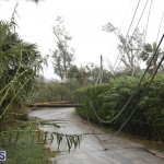 Post Hurricane Paulette Bermuda 14 2020 (32)