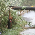 Post Hurricane Paulette Bermuda 14 2020 (33)