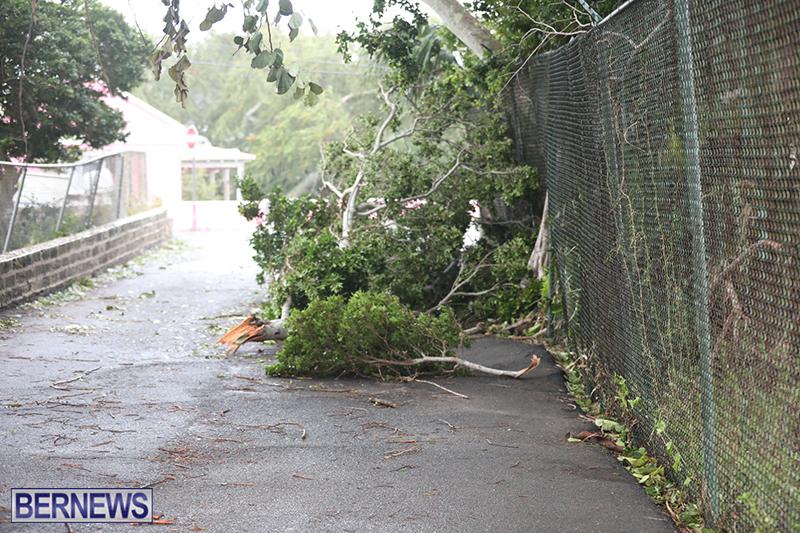 Post-Hurricane-Paulette-Bermuda-14-2020-34