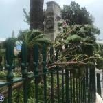 Post Hurricane Paulette Bermuda 14 2020 (6)