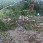 Post Hurricane Paulette Bermuda 14 2020 (7)
