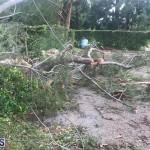 Post Hurricane Paulette Bermuda 14 2020 (8)