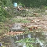 Post Hurricane Paulette Bermuda 14 2020 (9)