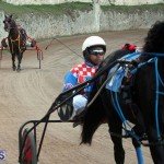 Bermuda Harness Pony Racing Season Oct 24 2020 10