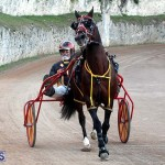 Bermuda Harness Pony Racing Season Oct 24 2020 11