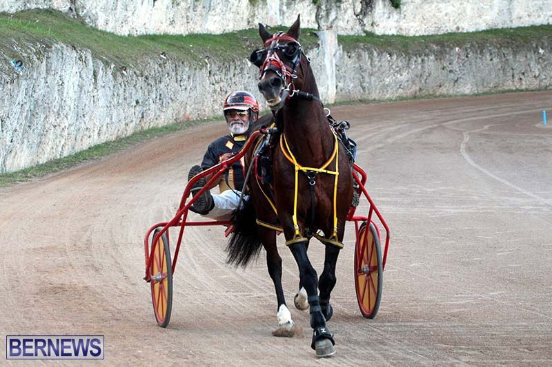 Bermuda-Harness-Pony-Racing-Season-Oct-24-2020-11